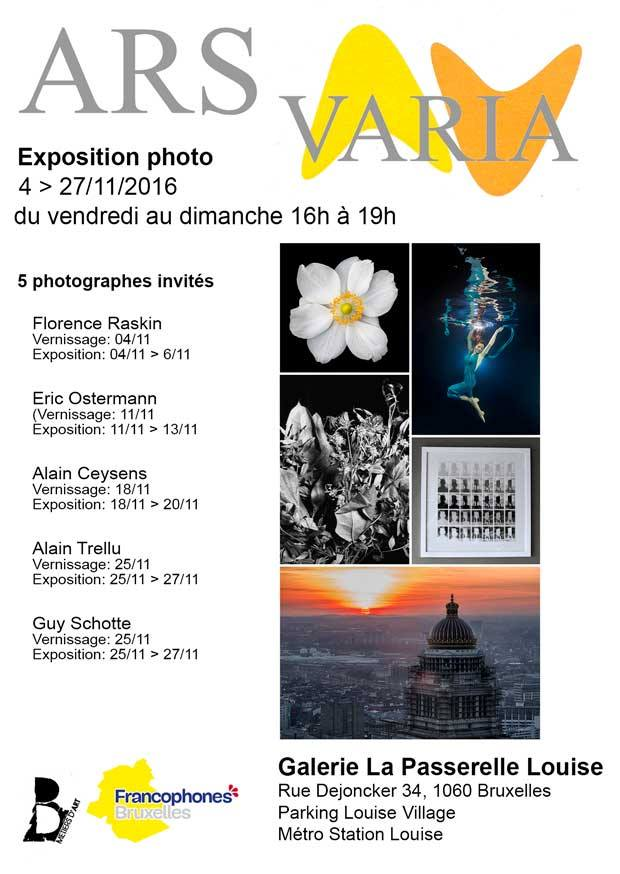 Affiche Ars Varia 2016 avec Florence Raskin