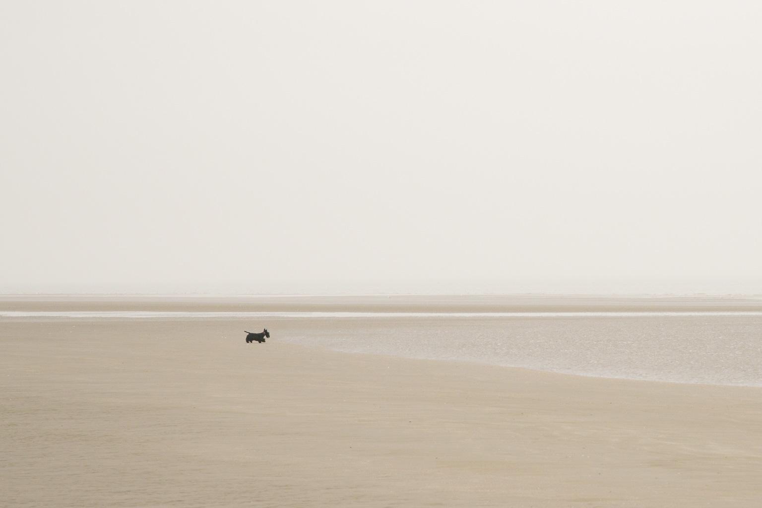 Earth & Sea by Florence Raskin